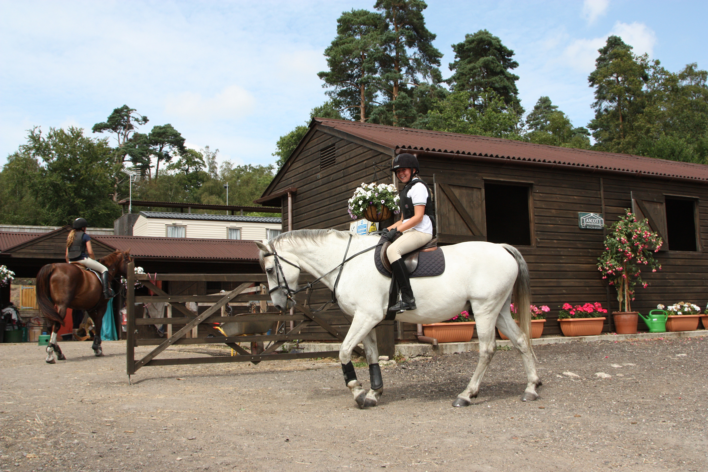 Contact Us Amp Useful Links Greatham Equestrian Centre