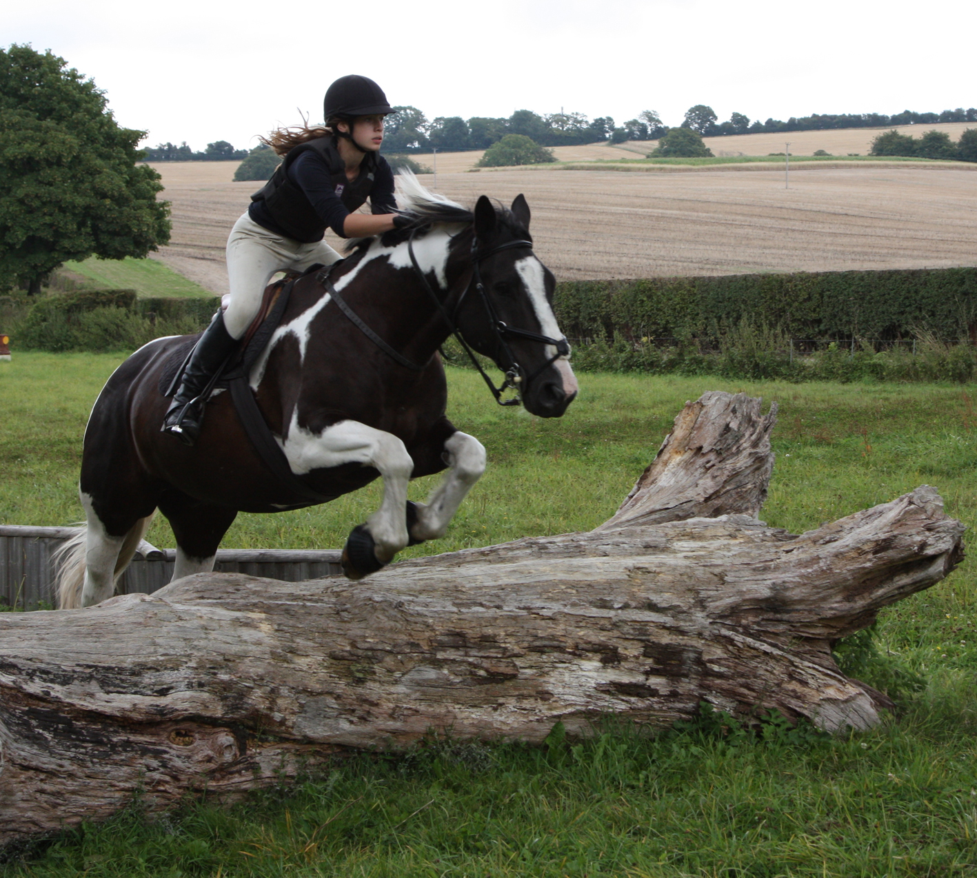 Cross Country And Show Jumping Training At Lower Peake