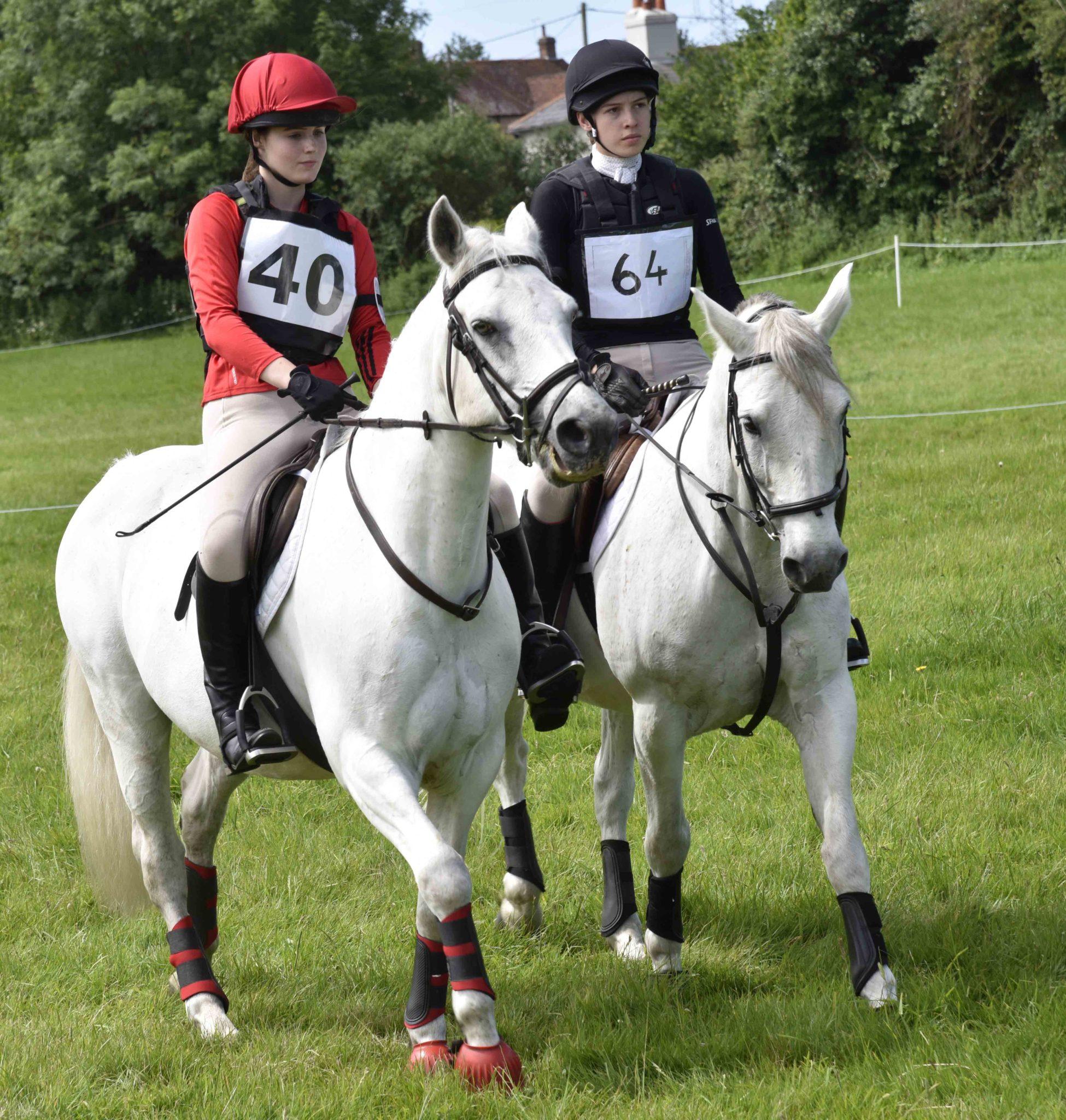 Greatham Equestrian Centre Hampshire Riding School